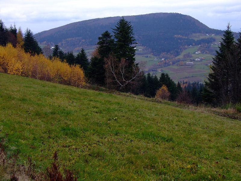 Kostrza i prowadzący na nią zielony szlak