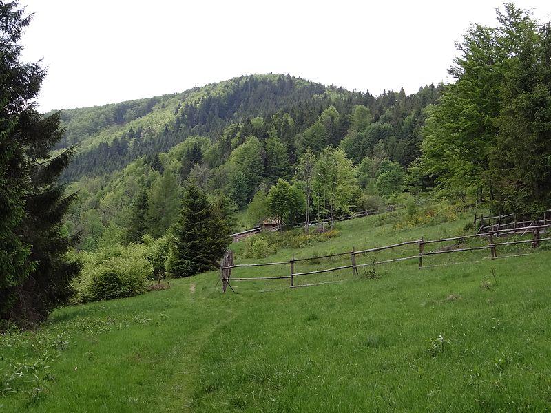 Przełęcz Opaczne
